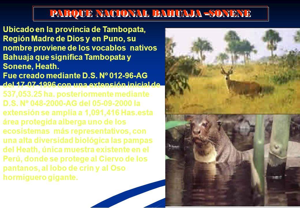 1 2 3 4 5 6 7 8 Creado mediante `D.S. 00644-73-AG (29-05- 1973) Comprende el 92 % en territorio de Madre de Dios y el 8% en Cusco. Tiene una extensión