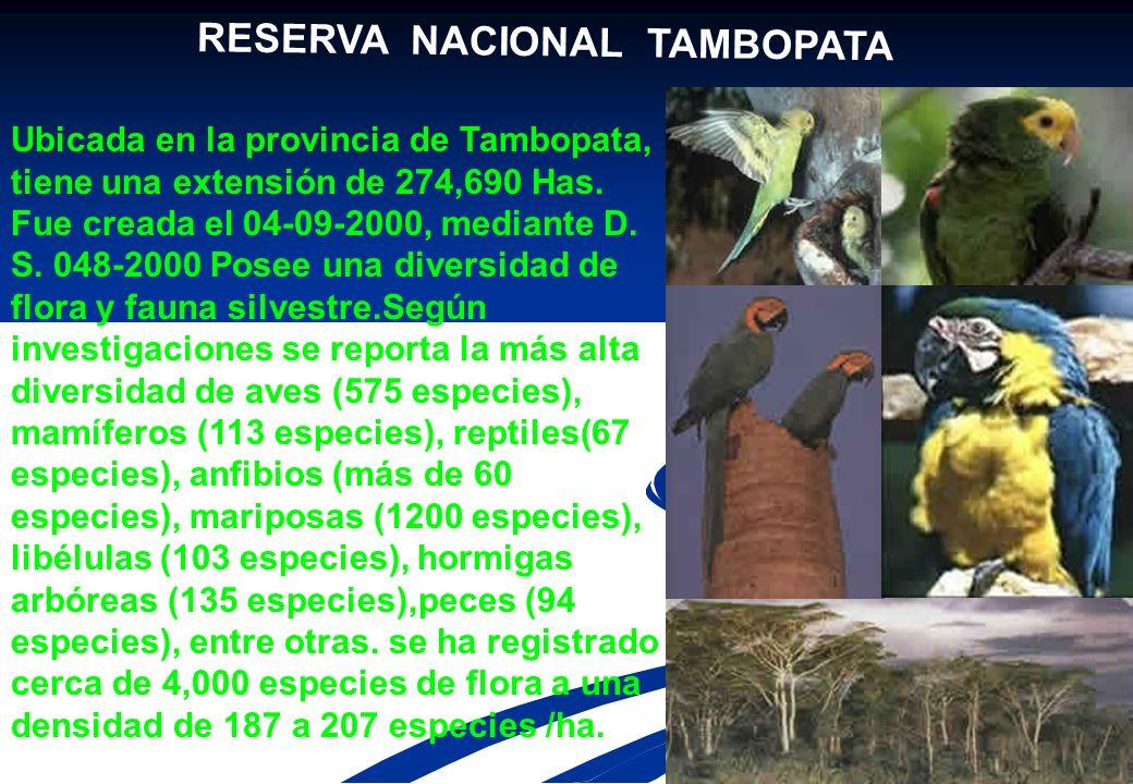 PARQUE NACIONAL BAHUAJA –SONENE 1 Ubicado en la provincia de Tambopata, Región Madre de Dios y en Puno, su nombre proviene de los vocablos nativos Bah