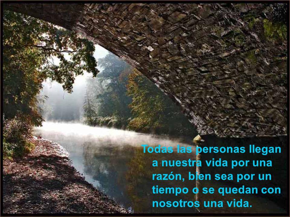 … a un oído que escucha, a un cumplido sincero, o a un pequeño gesto de gentileza. Mas, todos esos detalles tienen el mágico poder de cambiar tu vida