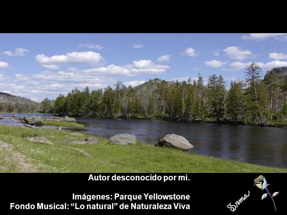 Autor desconocido por mi. Imágenes: Parque Yellowstone Fondo Musical: Lo natural de Naturaleza Viva