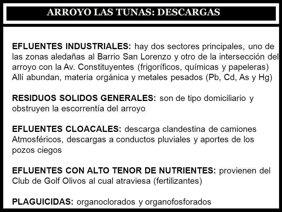 ARROYO LAS TUNAS: DESCARGAS EFLUENTES INDUSTRIALES: hay dos sectores principales, uno de las zonas aledañas al Barrio San Lorenzo y otro de la interse