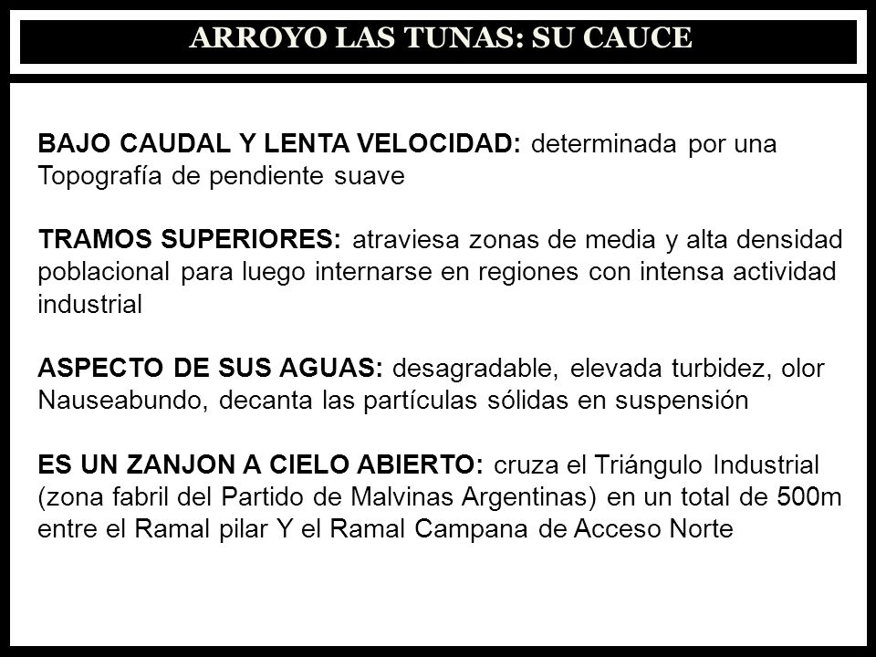 IMAGEN SATELITAL ARROYO LAS TUNAS ZONA DE VUELCO PAPELERAS PUENTE DE AV.