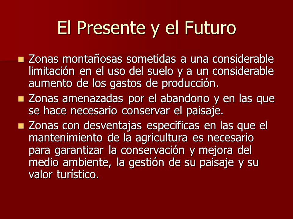 El Presente y el Futuro Zonas montañosas sometidas a una considerable limitación en el uso del suelo y a un considerable aumento de los gastos de prod