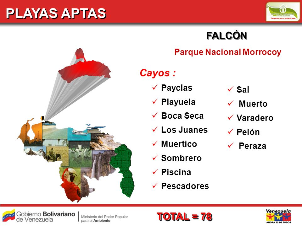 PLAYAS APTAS FALCÓN Parque Nacional Morrocoy TOTAL = 78 Cayos : Payclas Playuela Boca Seca Los Juanes Muertico Sombrero Piscina Pescadores Sal Muerto Varadero Pelón Peraza
