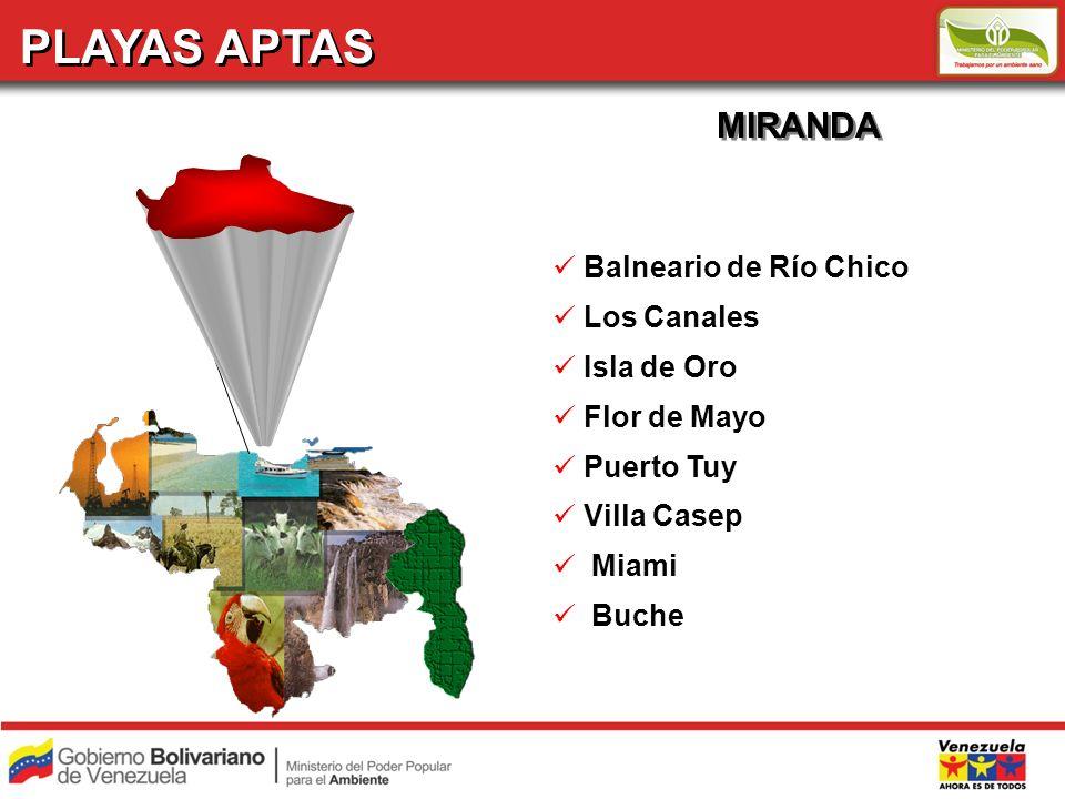 PLAYAS APTAS MIRANDA Balneario de Río Chico Los Canales Isla de Oro Flor de Mayo Puerto Tuy Villa Casep Miami Buche