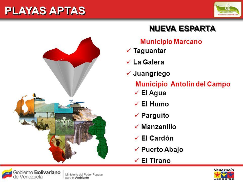PLAYAS APTAS NUEVA ESPARTA Municipio Marcano Taguantar La Galera Juangriego Municipio Antolín del Campo El Agua El Humo Parguito Manzanillo El Cardón