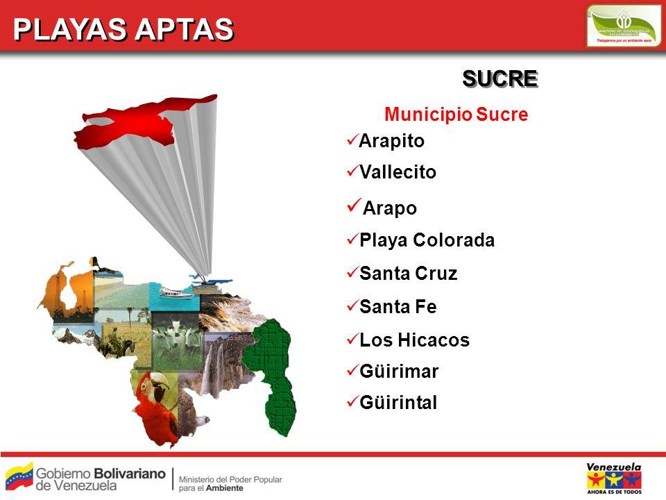 PLAYAS APTAS SUCRE Municipio Sucre Arapito Vallecito Arapo Playa Colorada Santa Cruz Santa Fe Los Hicacos Güirimar Güirintal