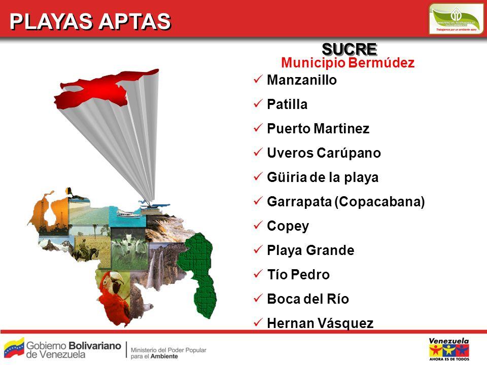 PLAYAS APTAS SUCRE Municipio Bermúdez Manzanillo Patilla Puerto Martinez Uveros Carúpano Güiria de la playa Garrapata (Copacabana) Copey Playa Grande