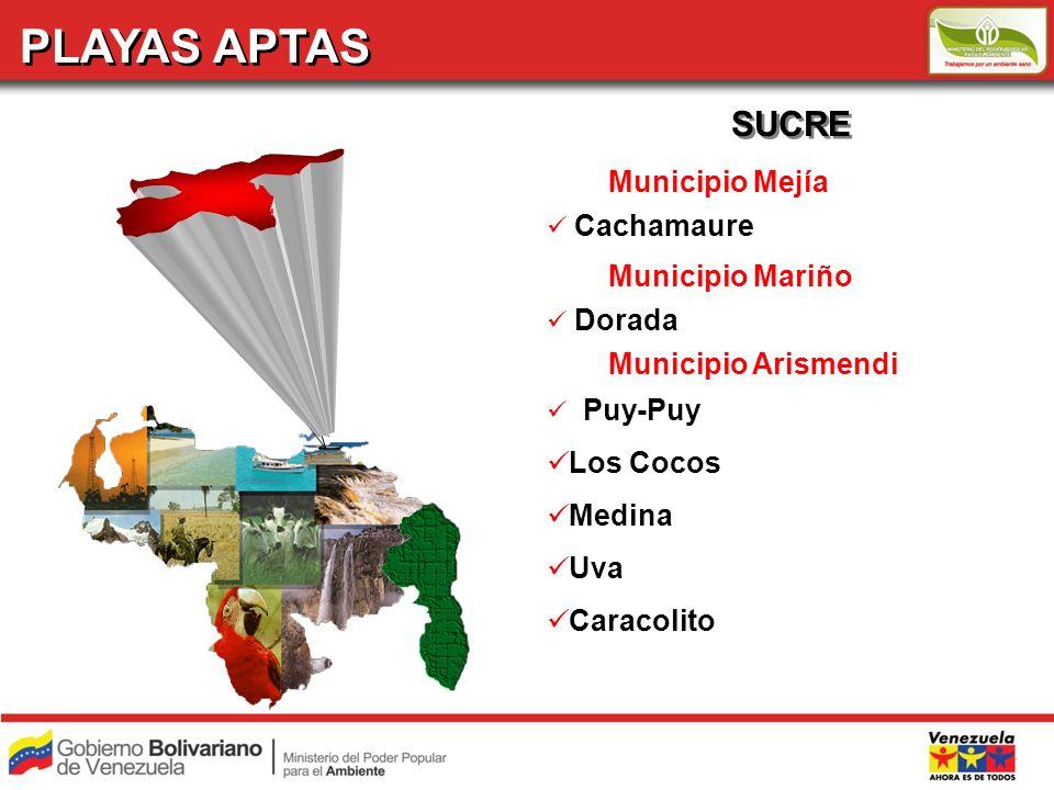 PLAYAS APTAS SUCRE Municipio Mejía Cachamaure Municipio Mariño Dorada Municipio Arismendi Puy-Puy Los Cocos Medina Uva Caracolito