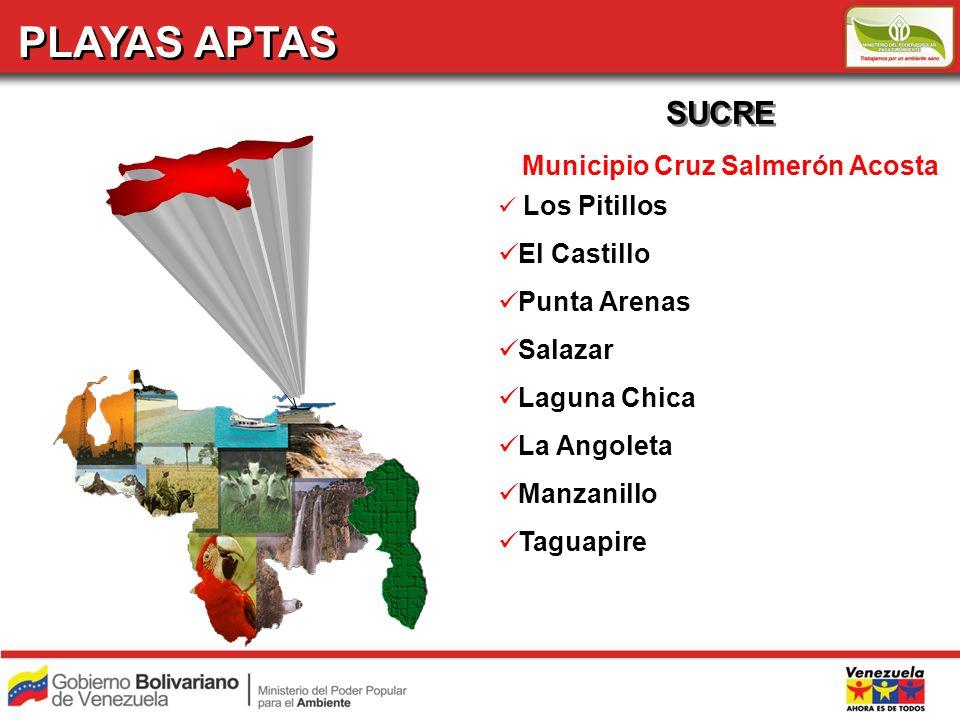 PLAYAS APTAS SUCRE Municipio Cruz Salmerón Acosta Los Pitillos El Castillo Punta Arenas Salazar Laguna Chica La Angoleta Manzanillo Taguapire