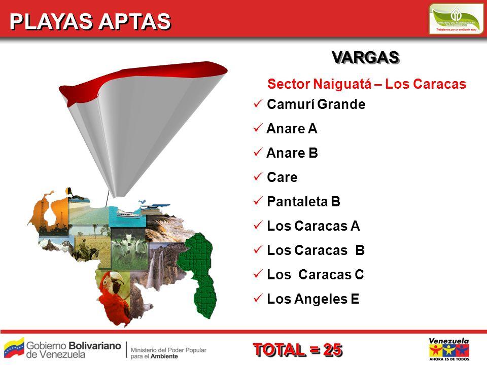 PLAYAS APTAS VARGAS Sector Naiguatá – Los Caracas Camurí Grande Anare A Anare B Care Pantaleta B Los Caracas A Los Caracas B Los Caracas C Los Angeles