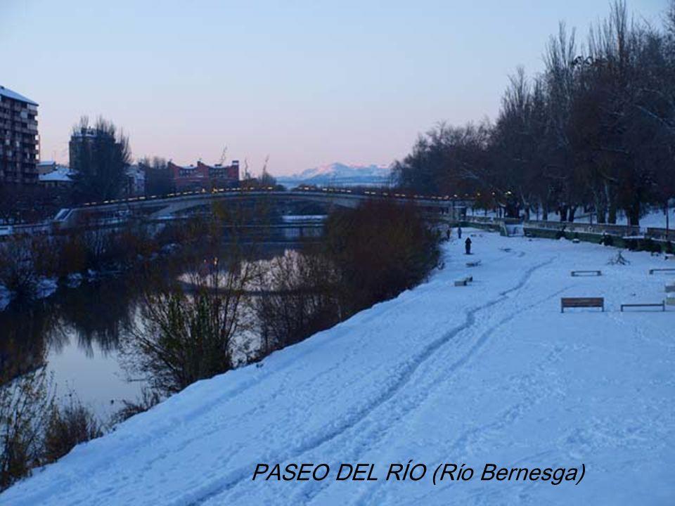 PASEO DEL RÍO (Río Bernesga)