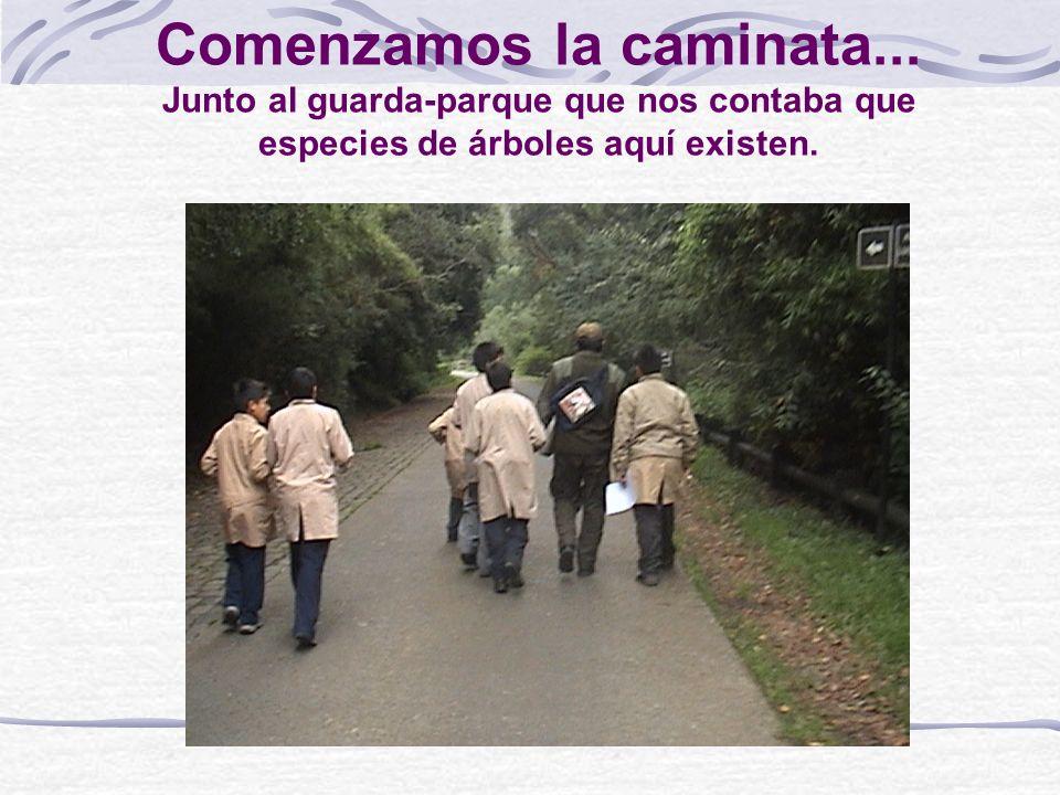 ¡QUE IMPORTANTE PASEO! Amigos del atlas les contamos que que nuestro grupo visitó el cerro Ñielol ubicado al noreste de nuestra ciudad de Temuco, cuan