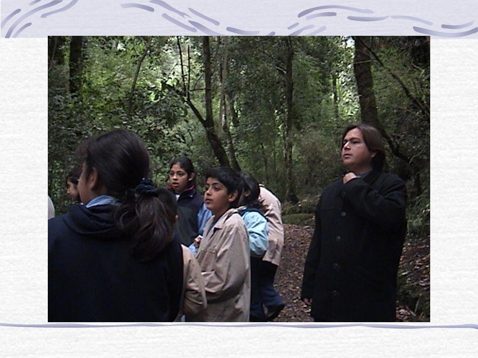 ¡Que impresionante la naturaleza! Nos detuvimos en un lugar que llaman agua santa, aquí el guarda-parque nos habla de la importancia de cuidar nuestra