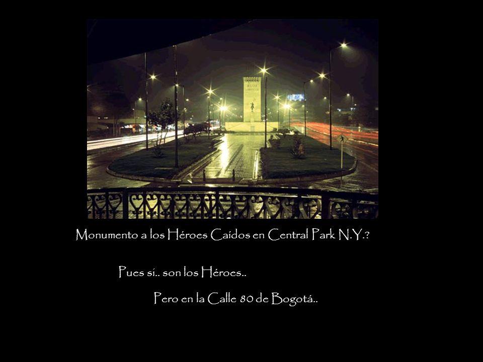 Monumento a los Héroes Caídos en Central Park N.Y..