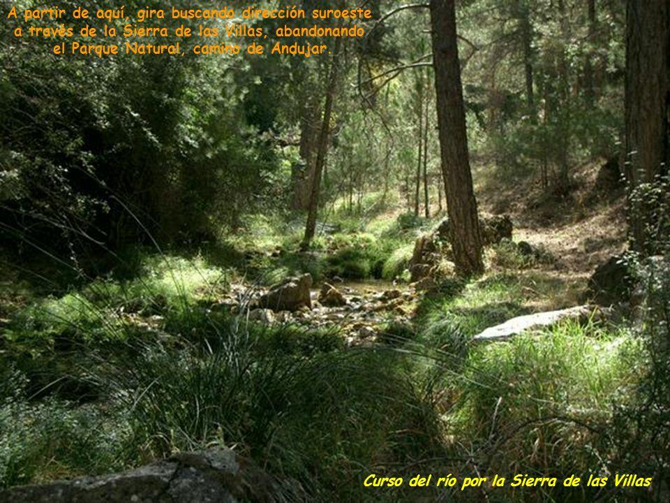 Un poco más abajo se les une los arroyos de la Juan Frías, de los Cerezos, Saúco, del Valle, de la Mesa, Amarillo y de los Habares.