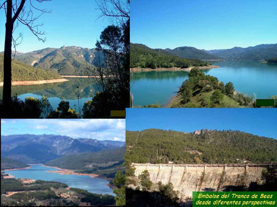 En el Parque Natural de Cazorla, Segura y las Villas, regado por el Guadalquivir, es de destacar una gran variedad de fauna y de flora.