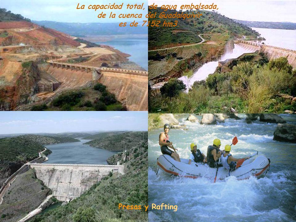 En la cuenca del Guadalquivir hay en la actualidad 56 pantanos, nueve de ellos en el mismo río.