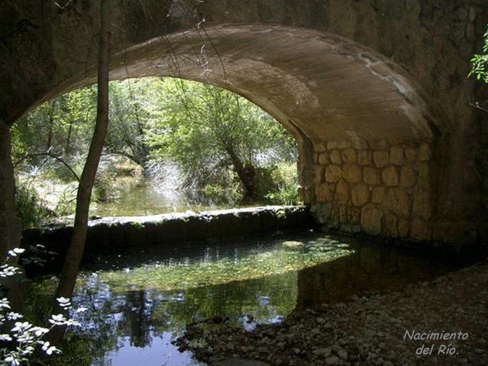 El Río Guadalquivir nace en la Cañada de las Fuentes en la Sierra de Cazorla y El Pozo en el término municipal de Quesada (Jaén).