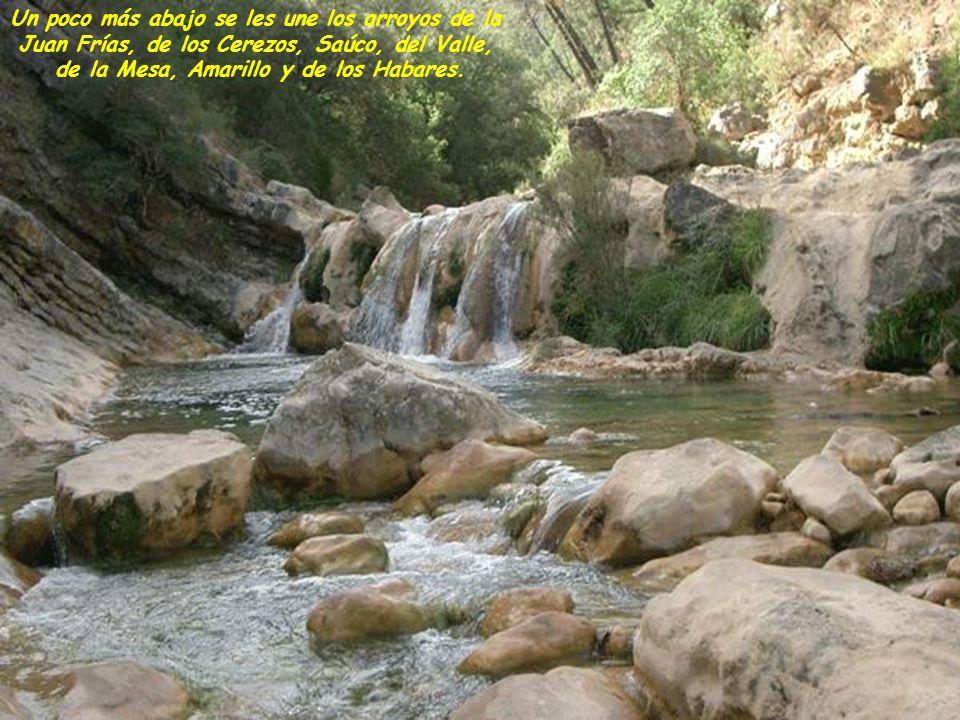 Llegado al valle y una vez dejado atrás la bella Cerrada de Utrero, y el arroyo Linarejos, recibe las aguas de los ríos Borosa y Aguamula que poco después se represan en el Embalse de El Tranco.