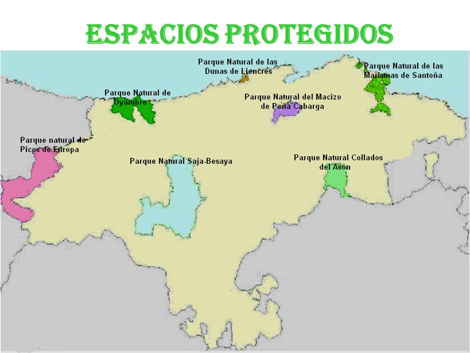 Espacios protegidos Parque Natural Saja- Besaya. Parque Natural de las Dunas de Liencres. Reserva Natural de las Marismas de Santoña, Victoria y Joyel