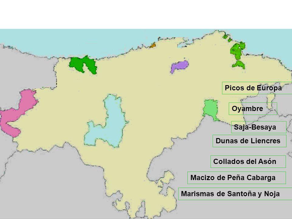 Picos de Europa Oyambre Saja-Besaya Macizo de Peña Cabarga Dunas de Liencres Collados del Asón Marismas de Santoña y Noja