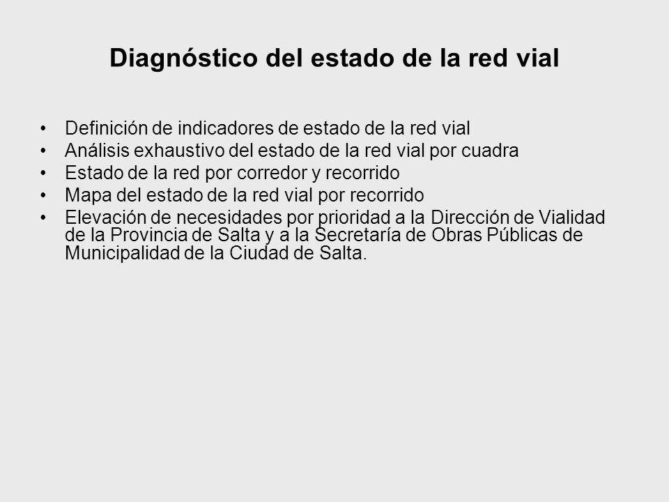 Diagnóstico del estado de la red vial Definición de indicadores de estado de la red vial Análisis exhaustivo del estado de la red vial por cuadra Esta
