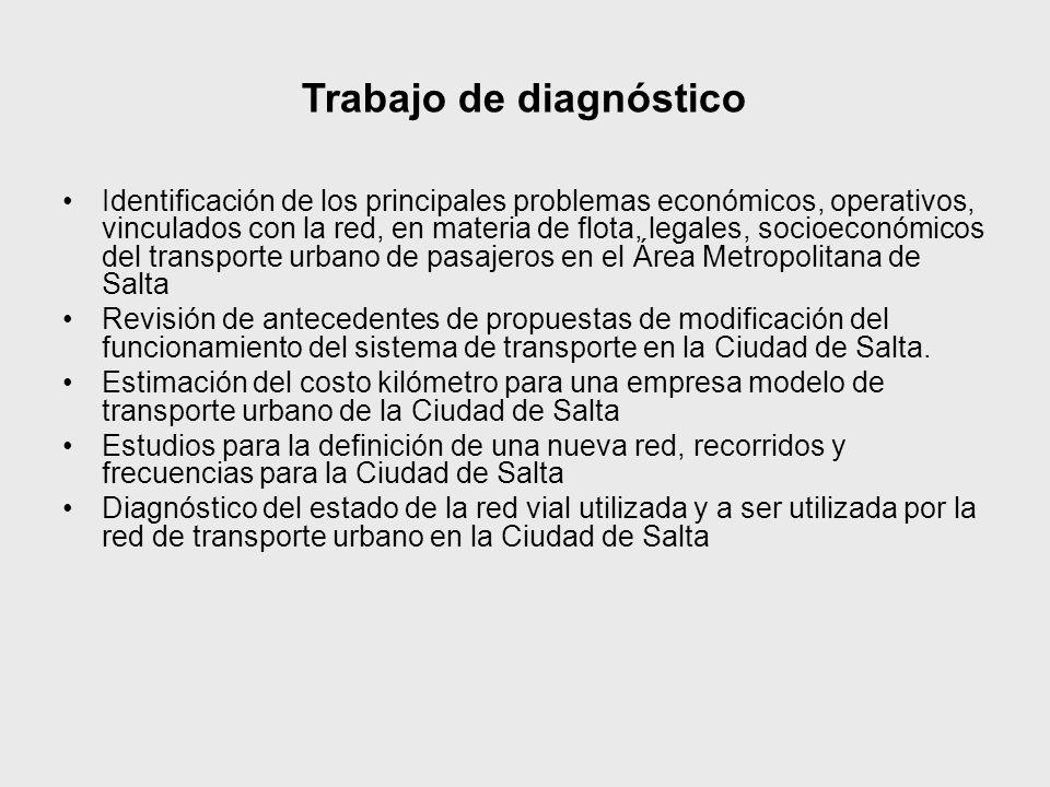 Trabajo de diagnóstico Identificación de los principales problemas económicos, operativos, vinculados con la red, en materia de flota, legales, socioe