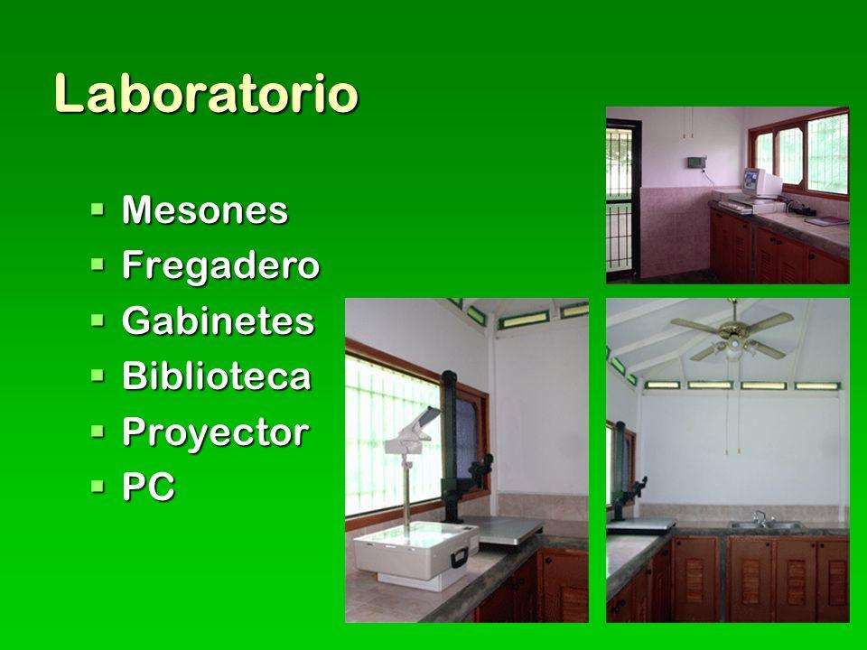 Laboratorio Mesones Mesones Fregadero Fregadero Gabinetes Gabinetes Biblioteca Biblioteca Proyector Proyector PC PC
