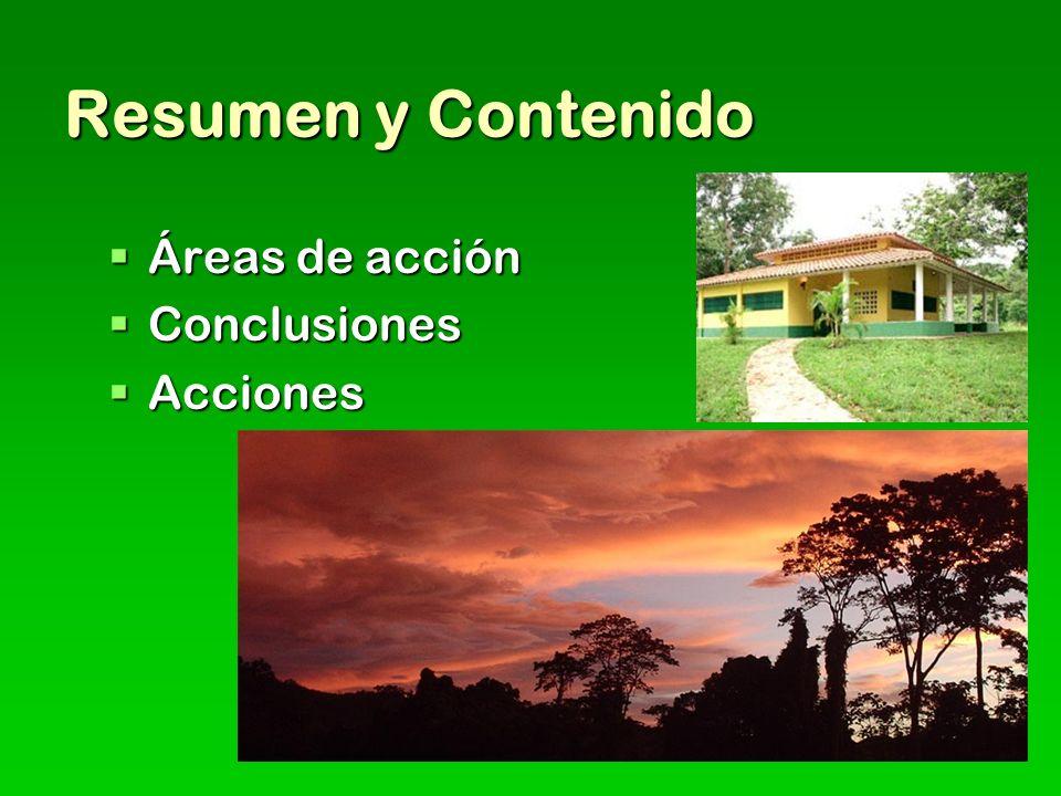 Resumen y Contenido Áreas de acción Áreas de acción Conclusiones Conclusiones Acciones Acciones