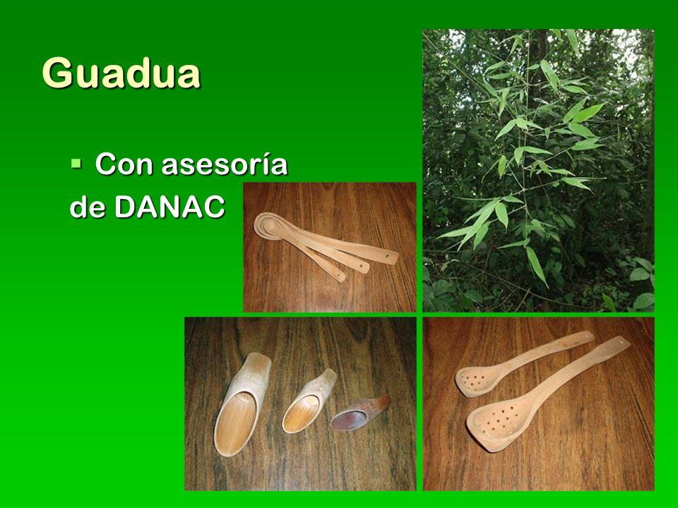 Guadua Con asesoría Con asesoría de DANAC