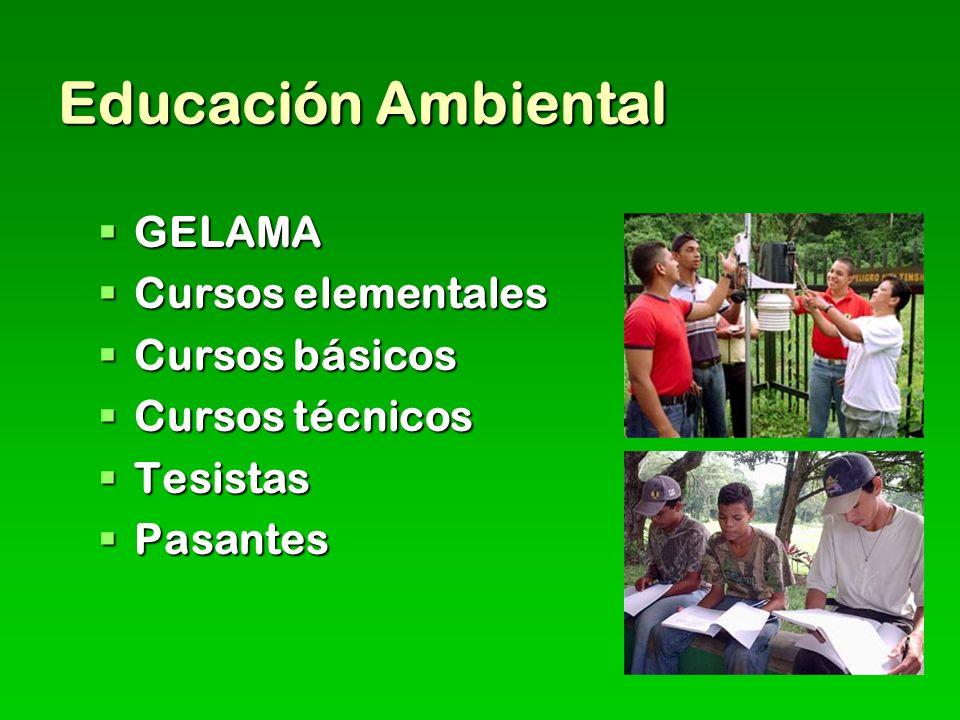 Educación Ambiental GELAMA GELAMA Cursos elementales Cursos elementales Cursos básicos Cursos básicos Cursos técnicos Cursos técnicos Tesistas Tesistas Pasantes Pasantes
