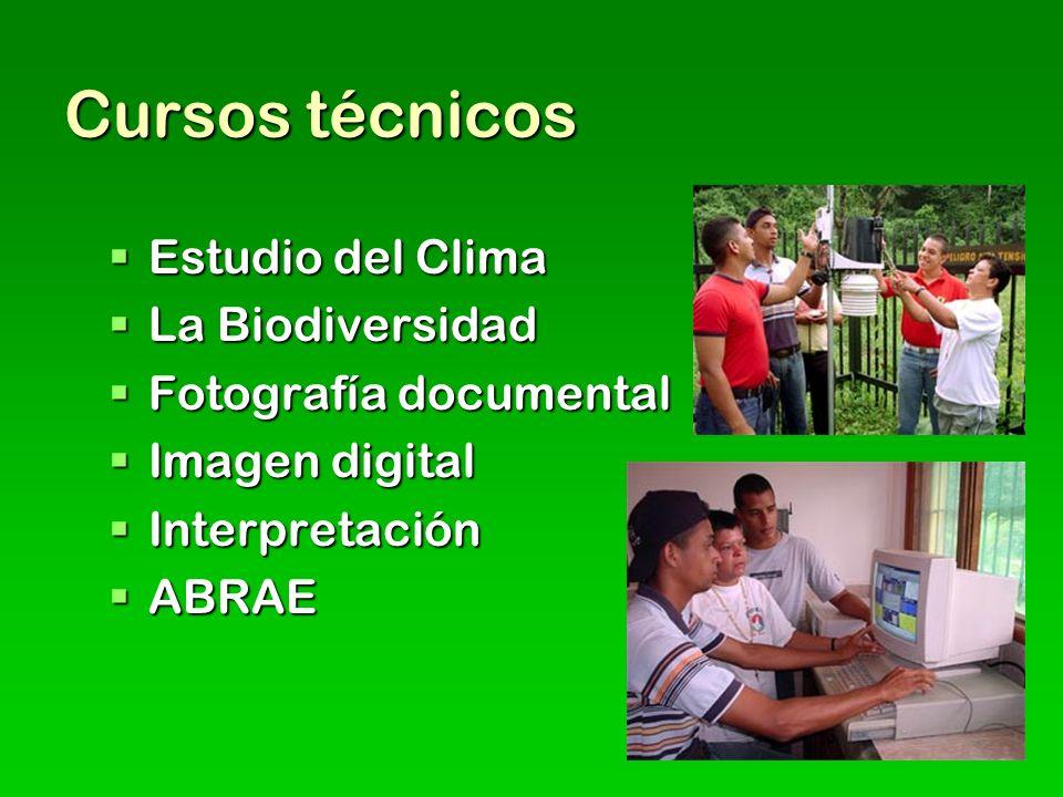 Cursos técnicos Estudio del Clima Estudio del Clima La Biodiversidad La Biodiversidad Fotografía documental Fotografía documental Imagen digital Image