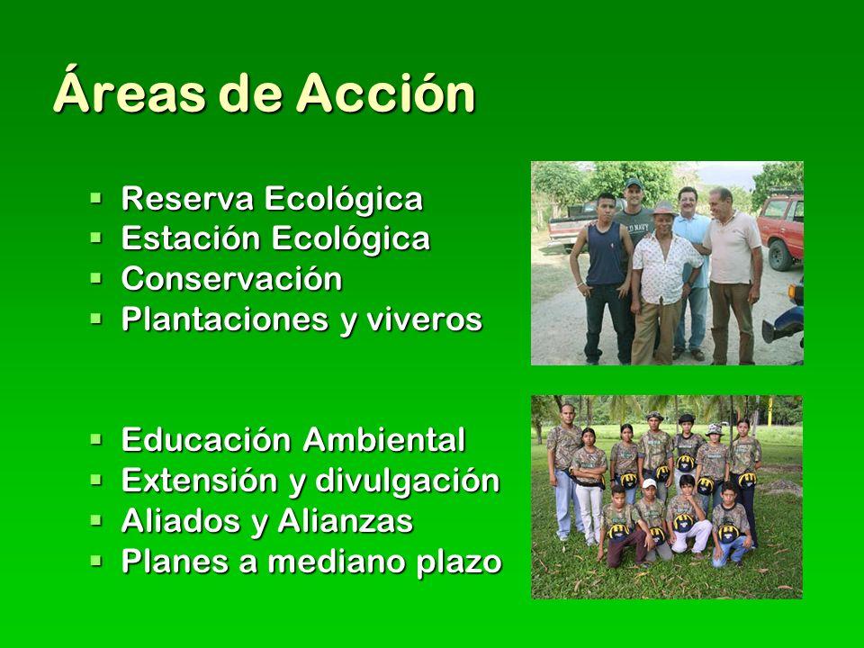 Áreas de Acción Reserva Ecológica Reserva Ecológica Estación Ecológica Estación Ecológica Conservación Conservación Plantaciones y viveros Plantaciones y viveros Educación Ambiental Educación Ambiental Extensión y divulgación Extensión y divulgación Aliados y Alianzas Aliados y Alianzas Planes a mediano plazo Planes a mediano plazo