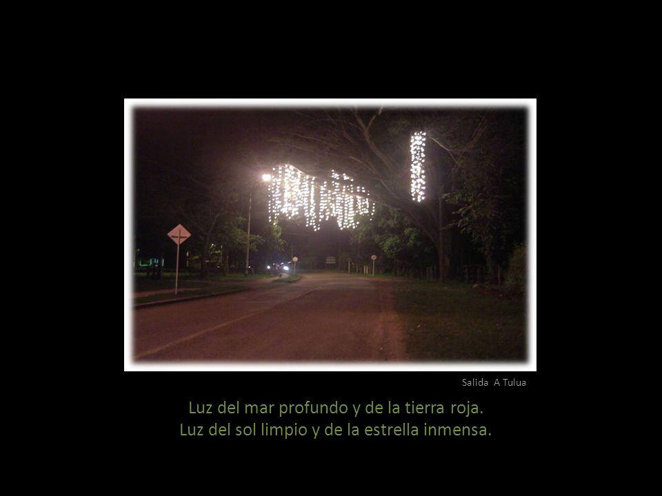 Parque San Bernabé Luces de la Navidad que alumbran al Niño de mi Portal