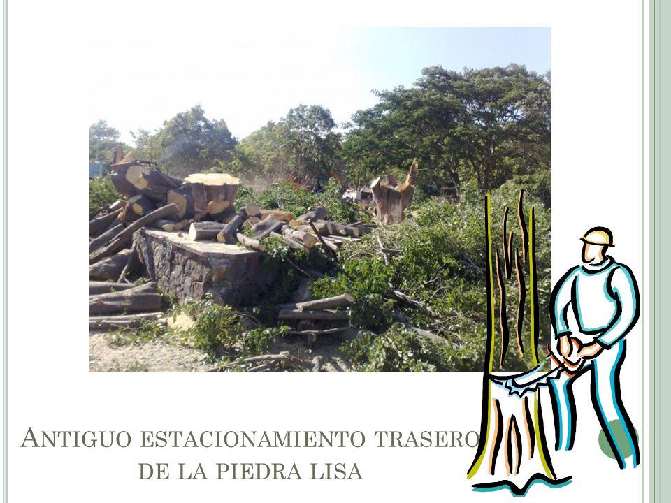 A NTIGUO ESTACIONAMIENTO TRASERO DE LA PIEDRA LISA