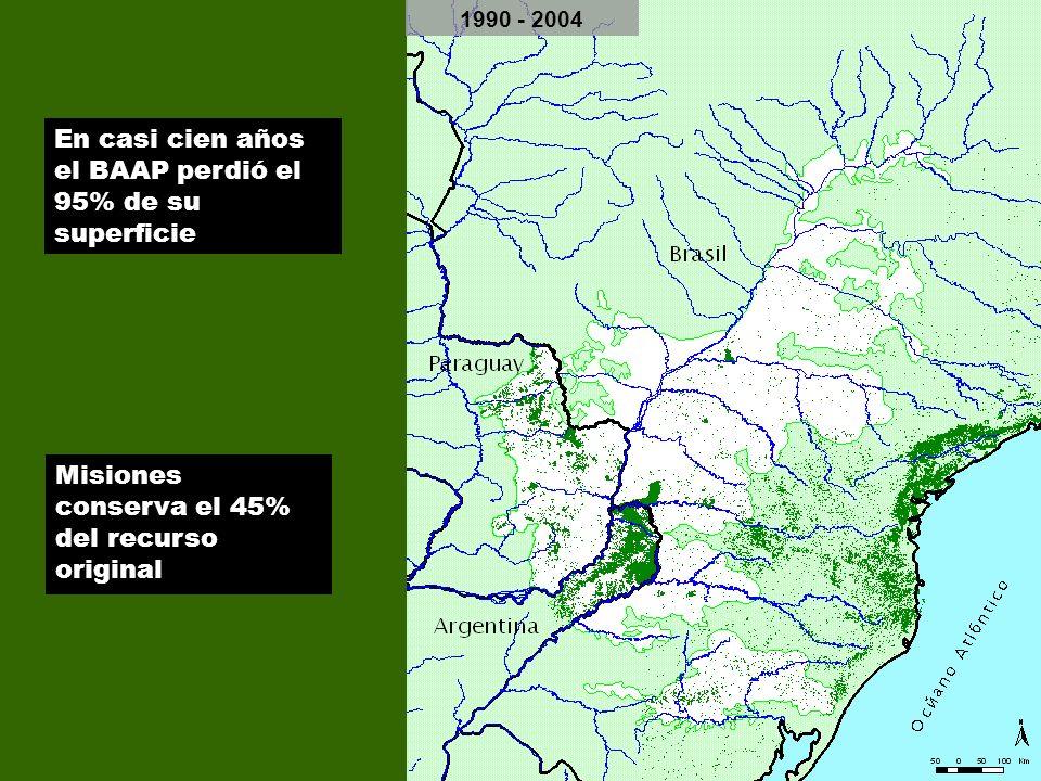 12 1900 1930 - 1940 1965 - 1975 1990 - 2004 En casi cien años el BAAP perdió el 95% de su superficie Misiones conserva el 45% del recurso original