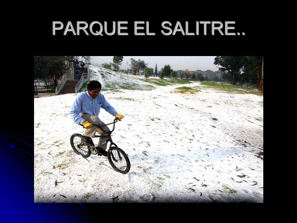 PARQUE EL SALITRE..