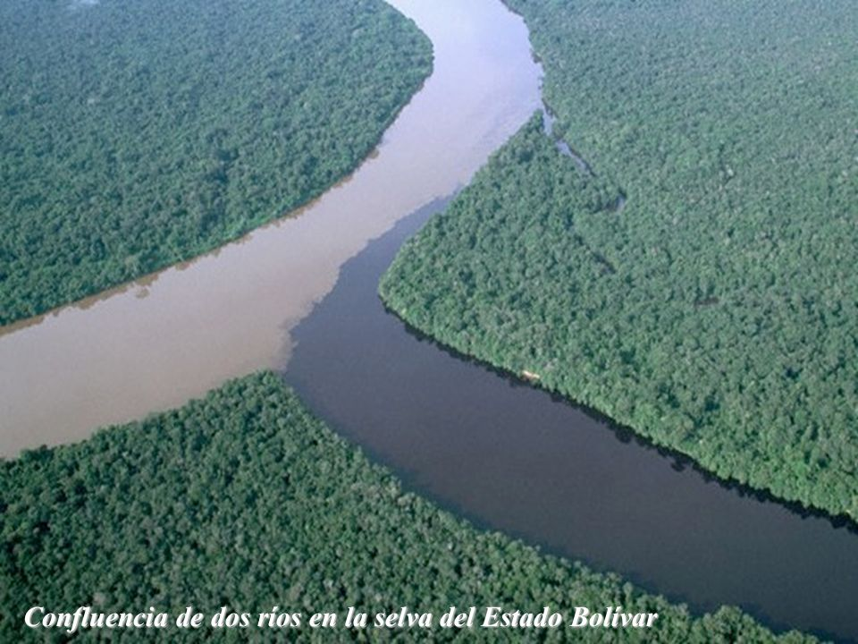 Gran Sabana Parque Nacional Canaima