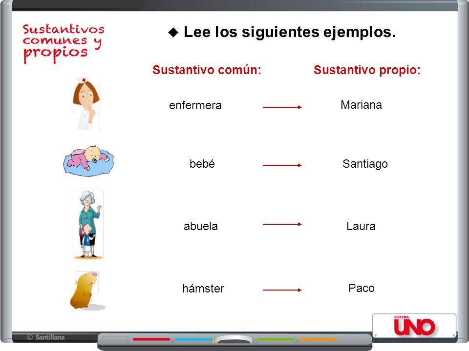 Lee los siguientes ejemplos. enfermera abuela bebé hámster Mariana Santiago Laura Paco Sustantivo común:Sustantivo propio: