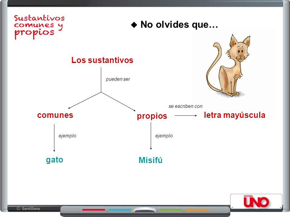 No olvides que… Los sustantivos pueden ser comunes propios ejemplo gato Misifú letra mayúscula se escriben con