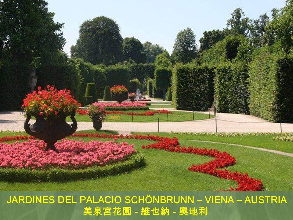 JARDINES DEL PALACIO SCHÖNBRUNN – VIENA – AUSTRIA - -