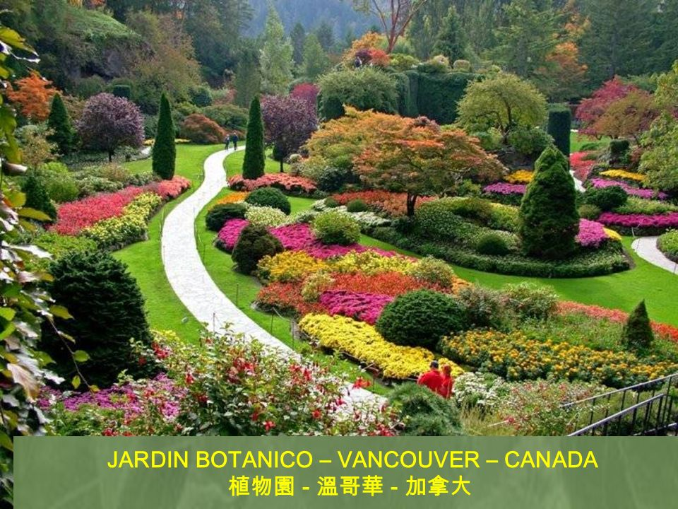 JARDIN JAPONES – PORTLAND – OREGON – USA - - -