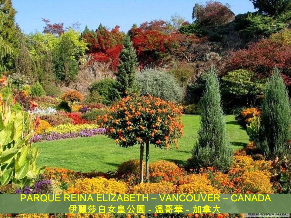 PARQUE REINA ELIZABETH – VANCOUVER – CANADA - -