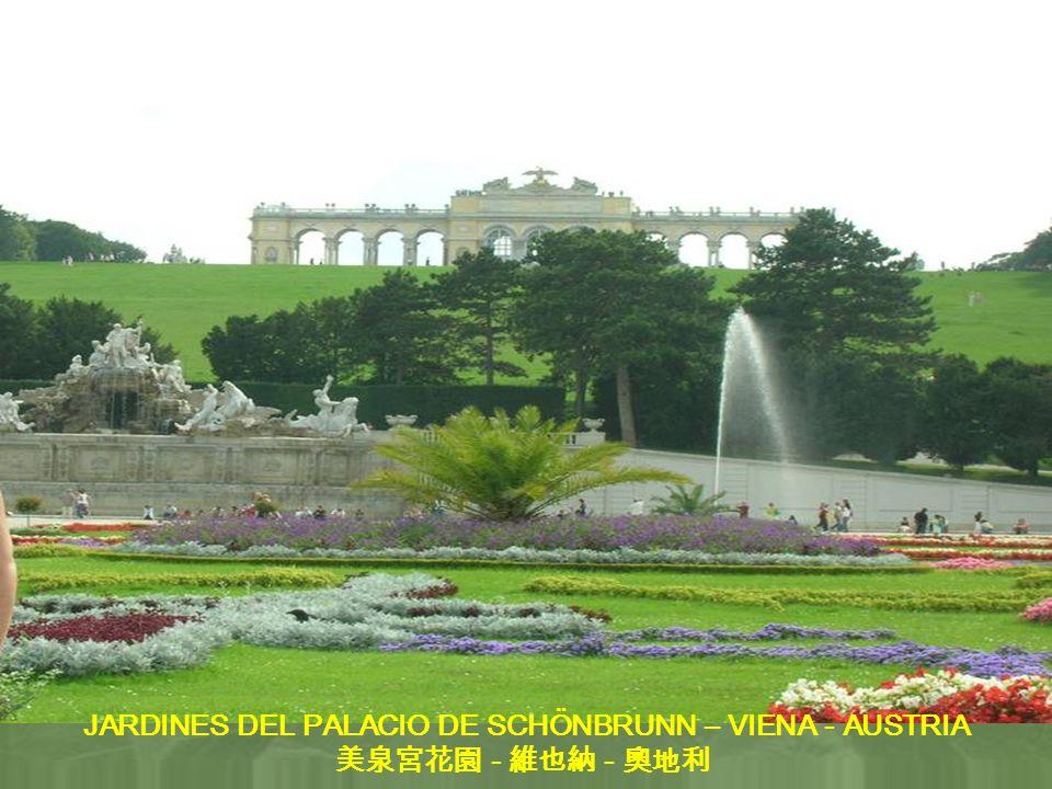 JARDINES DEL PALACIO DE SCHÖNBRUNN – VIENA - AUSTRIA - -