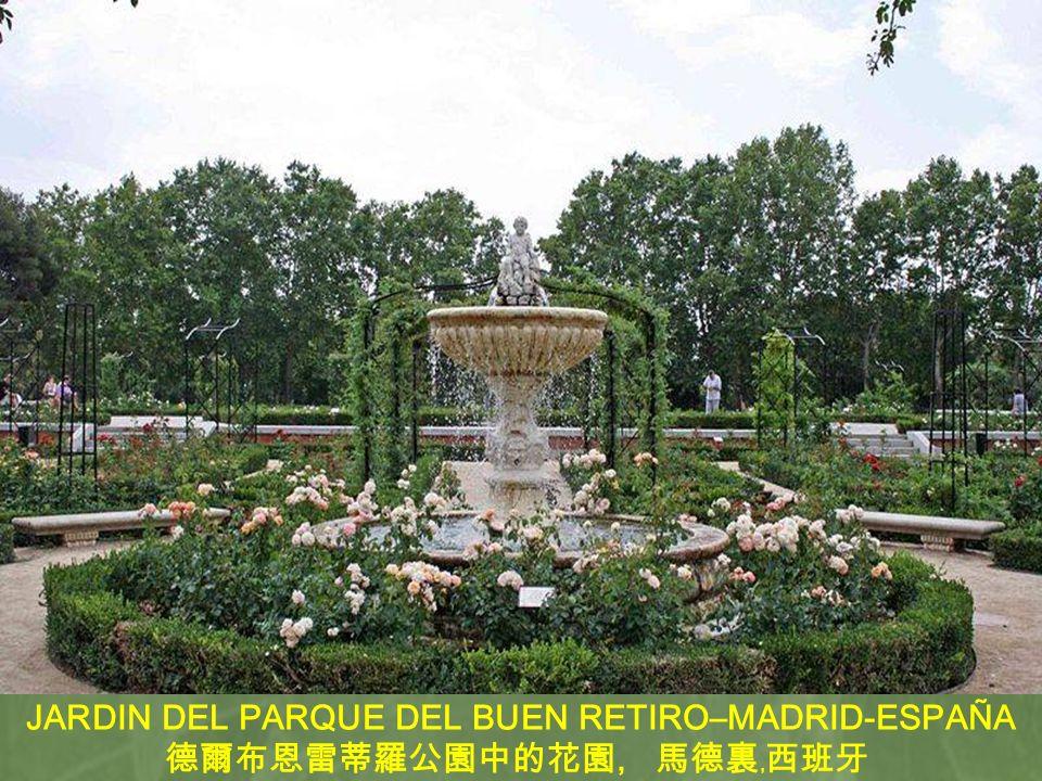 JARDIN DEL PARQUE DEL BUEN RETIRO–MADRID-ESPAÑA,