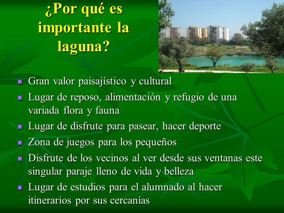 ¿Por qué es importante la laguna? Gran valor paisajístico y cultural Gran valor paisajístico y cultural Lugar de reposo, alimentación y refugio de una