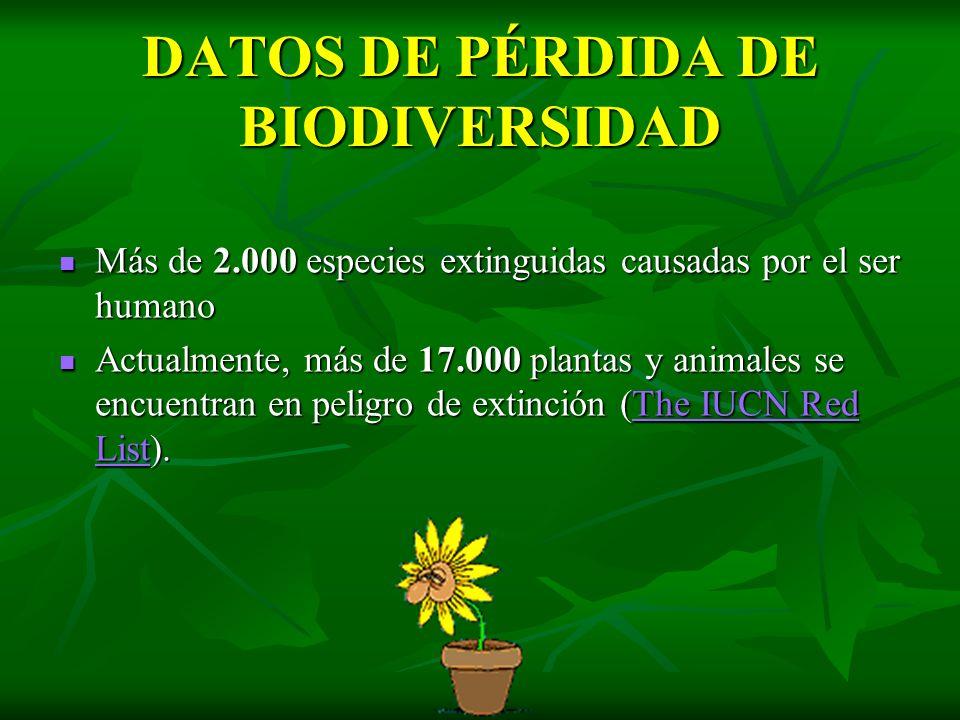 DATOS DE PÉRDIDA DE BIODIVERSIDAD Más de 2.000 especies extinguidas causadas por el ser humano Más de 2.000 especies extinguidas causadas por el ser h