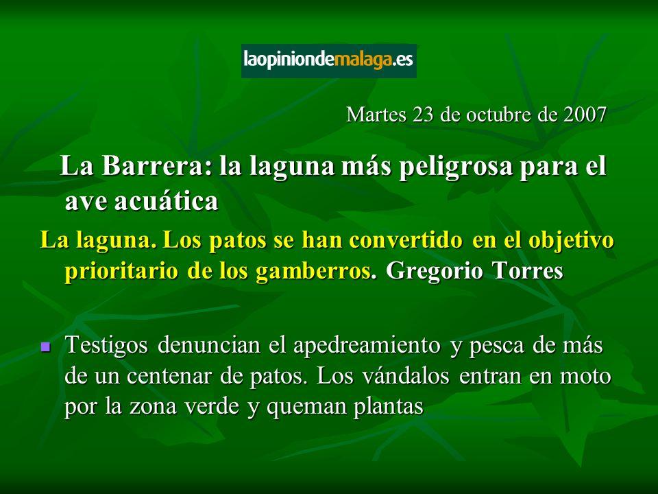 La Barrera: la laguna más peligrosa para el ave acuática La Barrera: la laguna más peligrosa para el ave acuática La laguna. Los patos se han converti