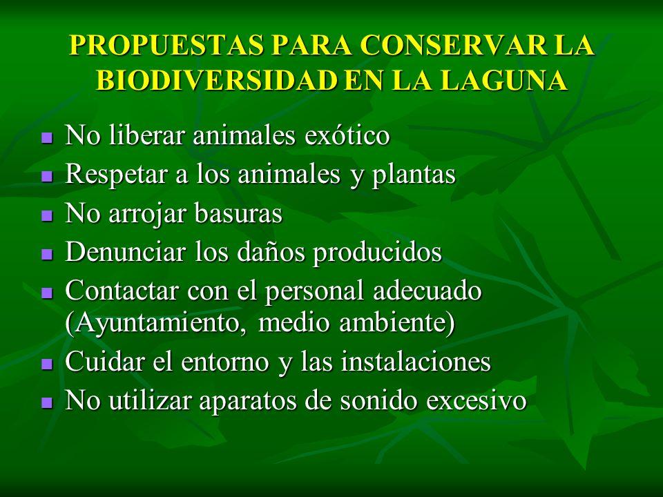 PROPUESTAS PARA CONSERVAR LA BIODIVERSIDAD EN LA LAGUNA No liberar animales exótico No liberar animales exótico Respetar a los animales y plantas Resp